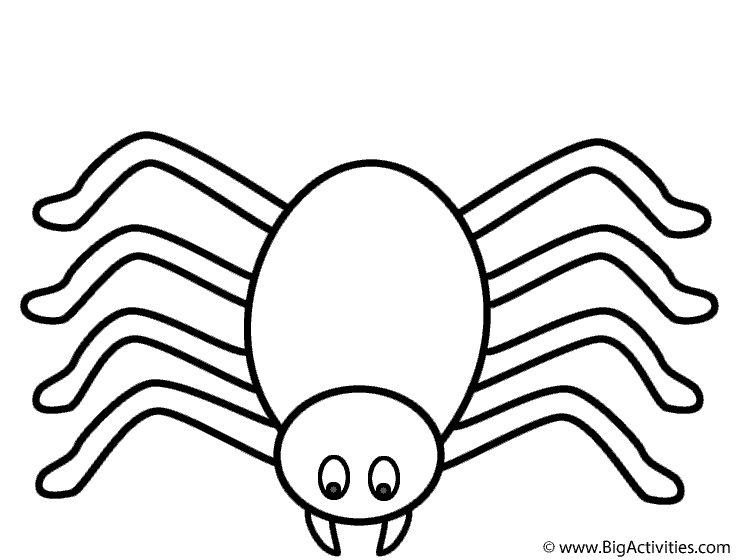Spider - Coloring Page (Halloween)