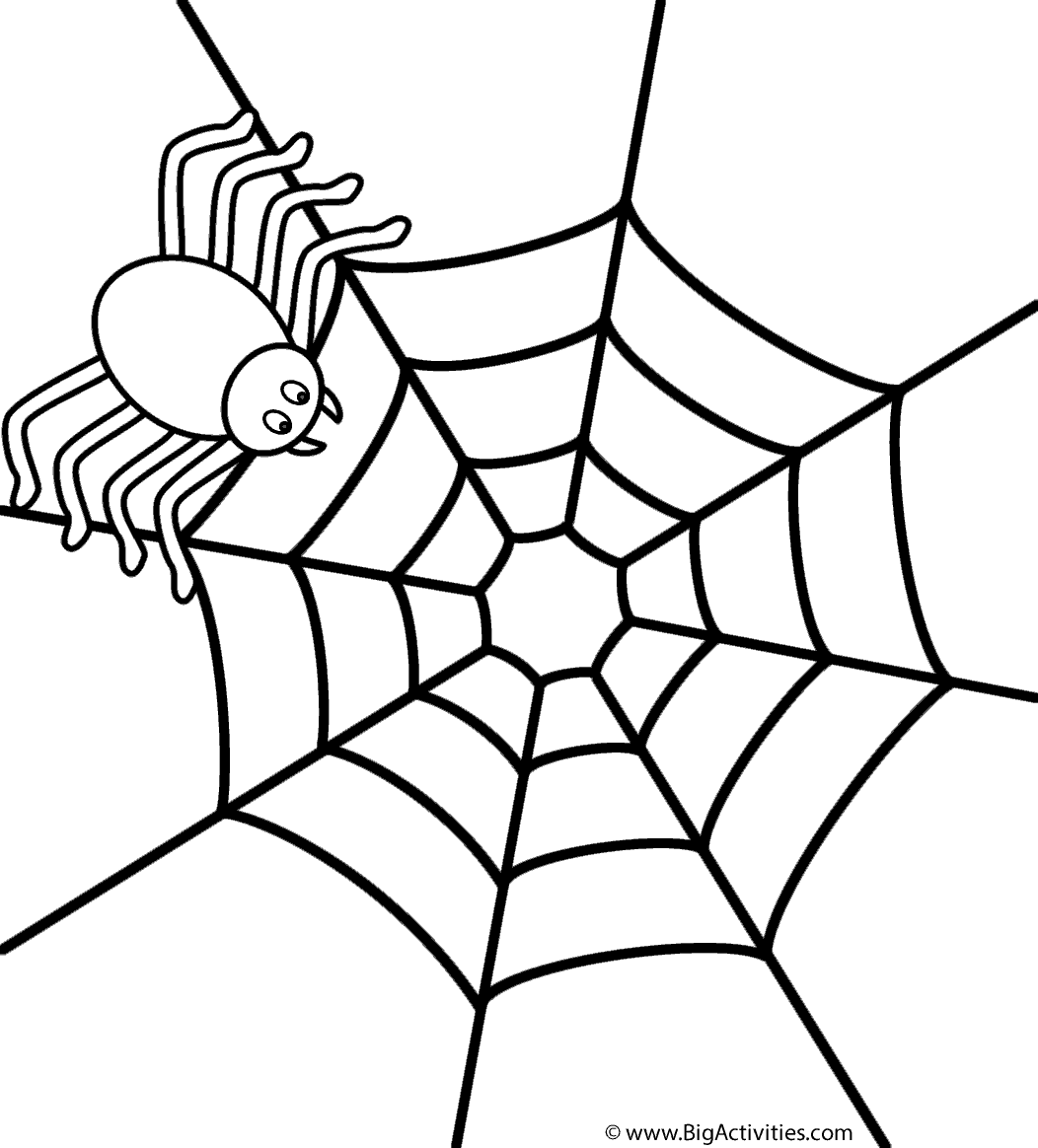 Spider on web Coloring Page Halloween