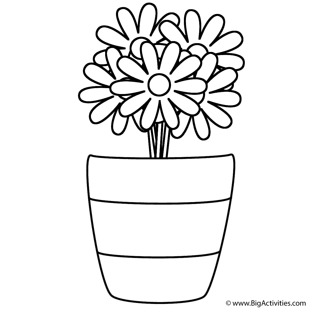 Flowers in Vase with Stripes Coloring Page Plants