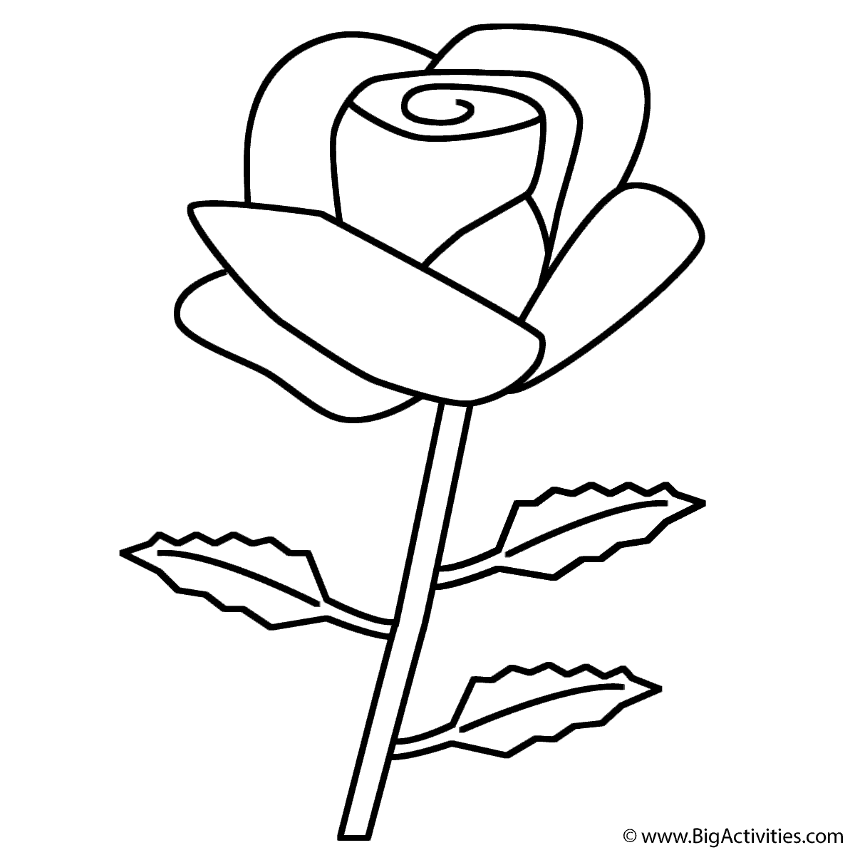 rose coloring page valentines day